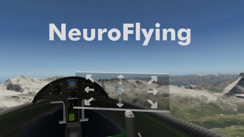 NeuroFly